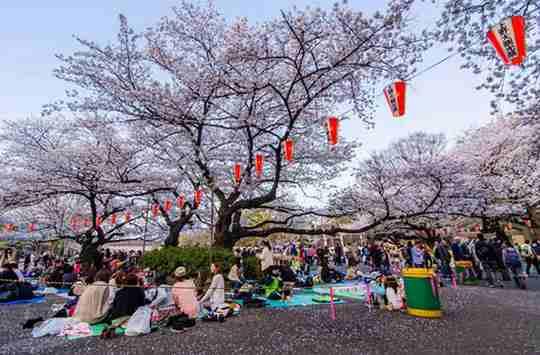 Nhật Bản chính thức tuyên bố nới lỏng thị thực cho Việt Nam